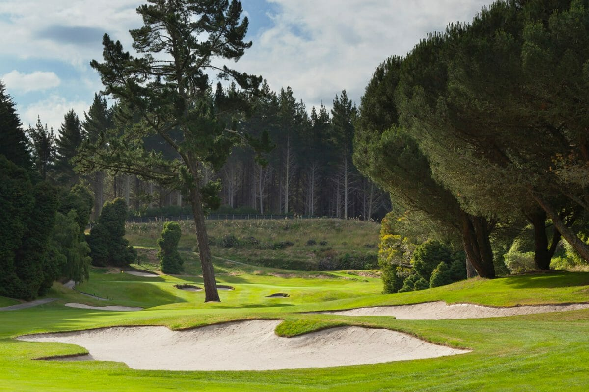 Distant pine trees frame the horizon from the fourteenth hole