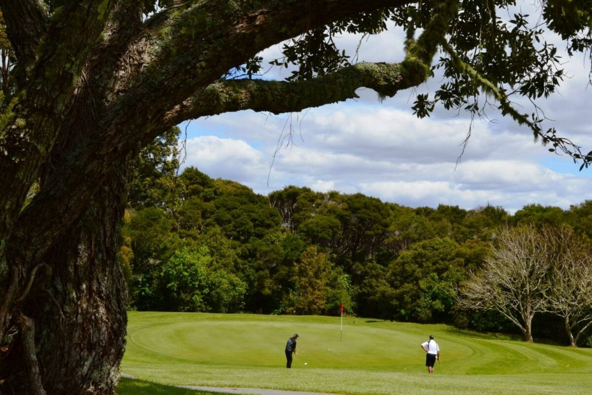 Waitangi golf course playing in New Zealand