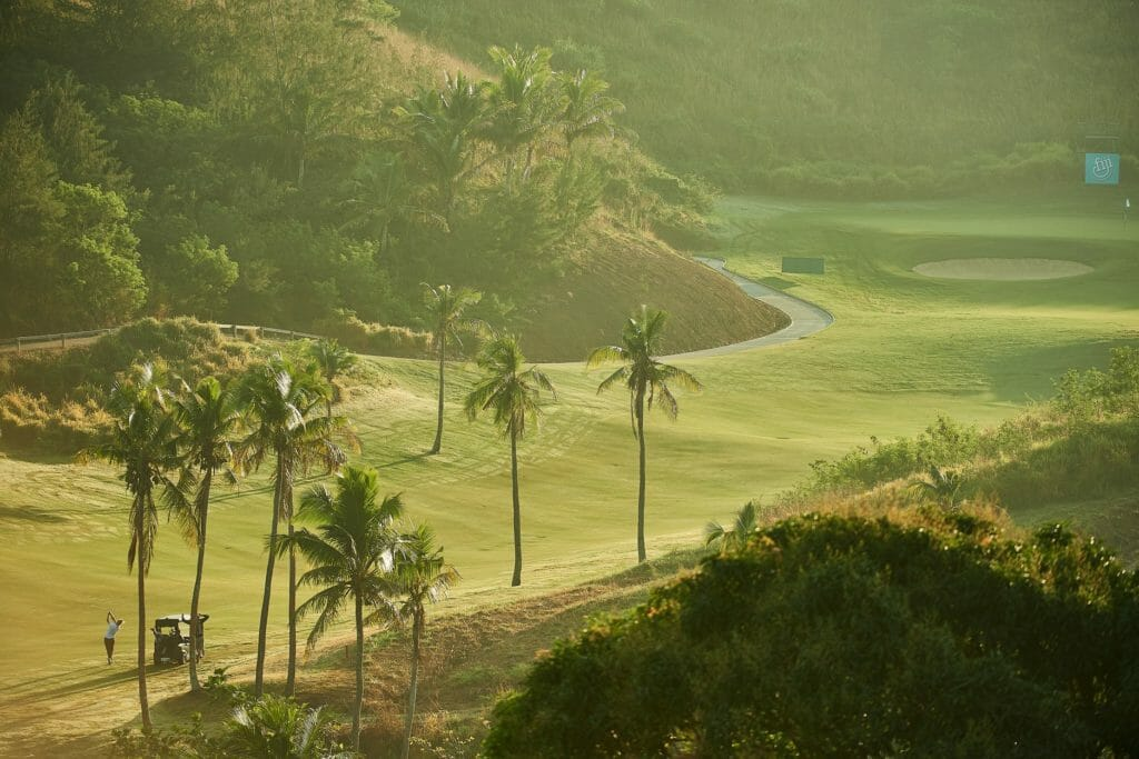 Golfer plays in valley under palm trees