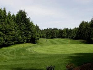 Image overlooking a green as players hit their golf balls, Salishan Resort, Oregon, USA