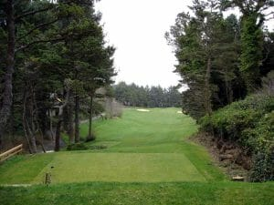 Image from the 17th tee looking down towards the fairway