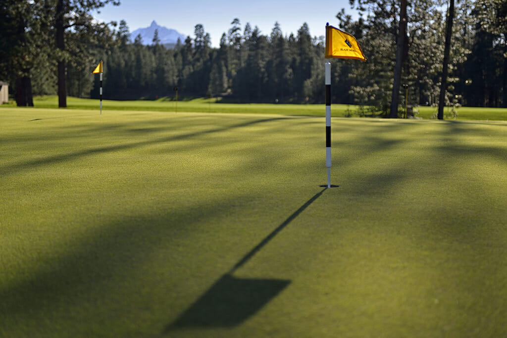 Closeup image of the practice putting green at the Black Butte Ranch, Oregon, USA