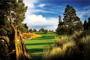Image of the 12th fairway on the Pronghorn golf course designed by Tom Fazio, Pronghorn Golf Resort, Bend, Oregon, USA