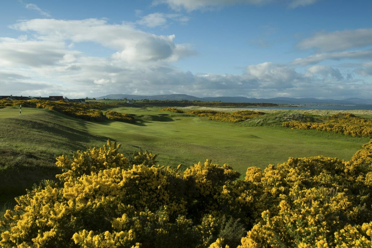Image of the 7th hole on the Championship course and gorse bushes at Royal Dornoch Golf Club, Scotland