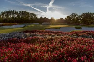 Red flowers surround the sixteenth green at Sentryworld golf club