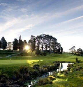 Image of the sun shining through trees on the Titirangi Golf Course's 8th hole in New Zealand
