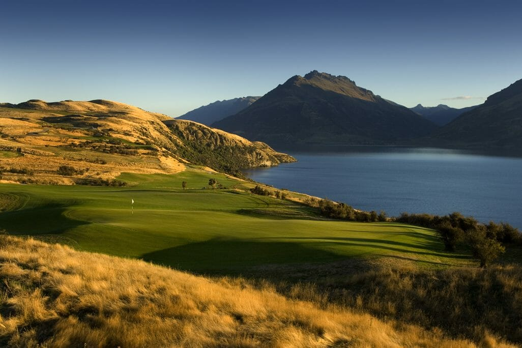 Image of wild fescue grass on Jack's Point Golf Course, Queenstown