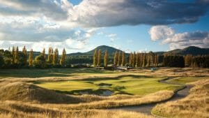 Landscape image of pencil pine trees surrounding the Kinloch Club Golf Course, New Zeland