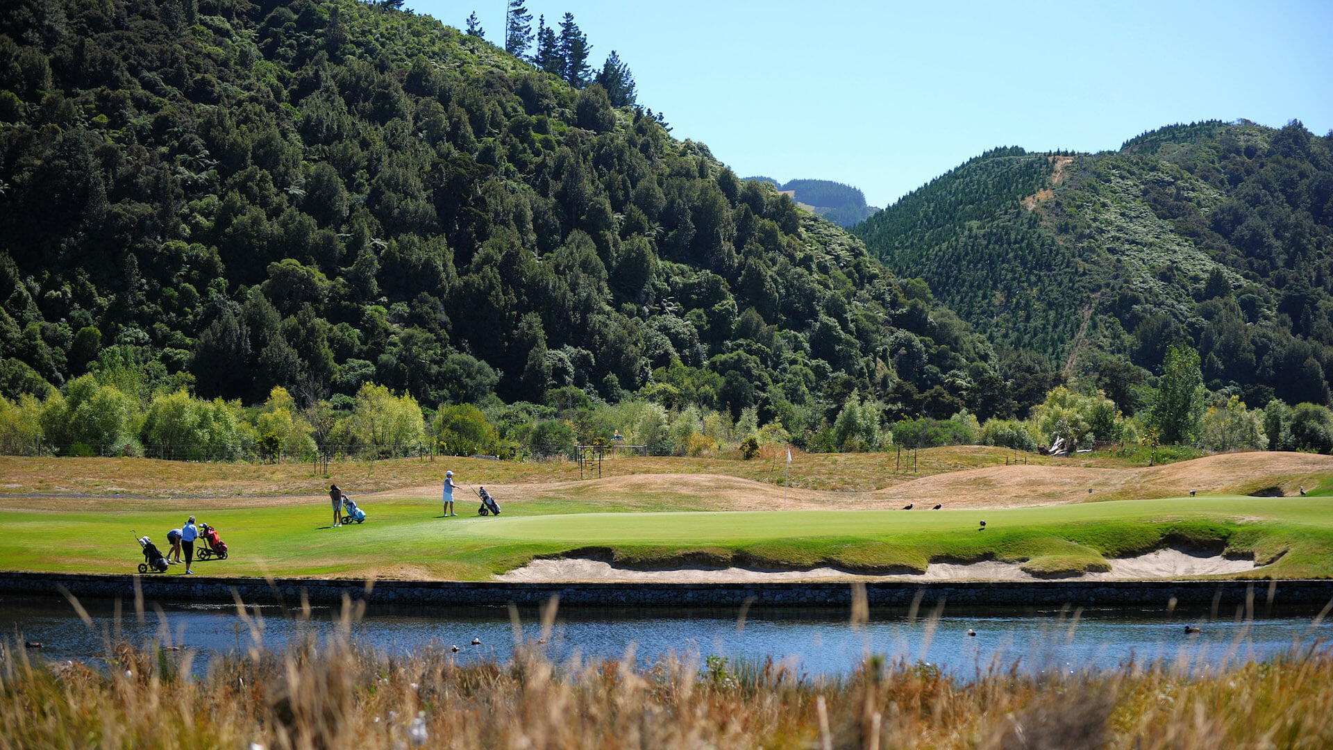 Travelling golfers enter a green on the Royal Wellington Golf Course