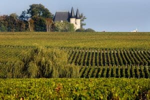 Vineyards and distant chateaux spires under a blue sky