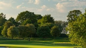 Dense foliage surrounds the golf course at Forest of Arden Marriot Golf and Country Club