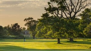 Golden light shines on oak trees on the fairways of Marriot Forest of Arden Championship Golf Course