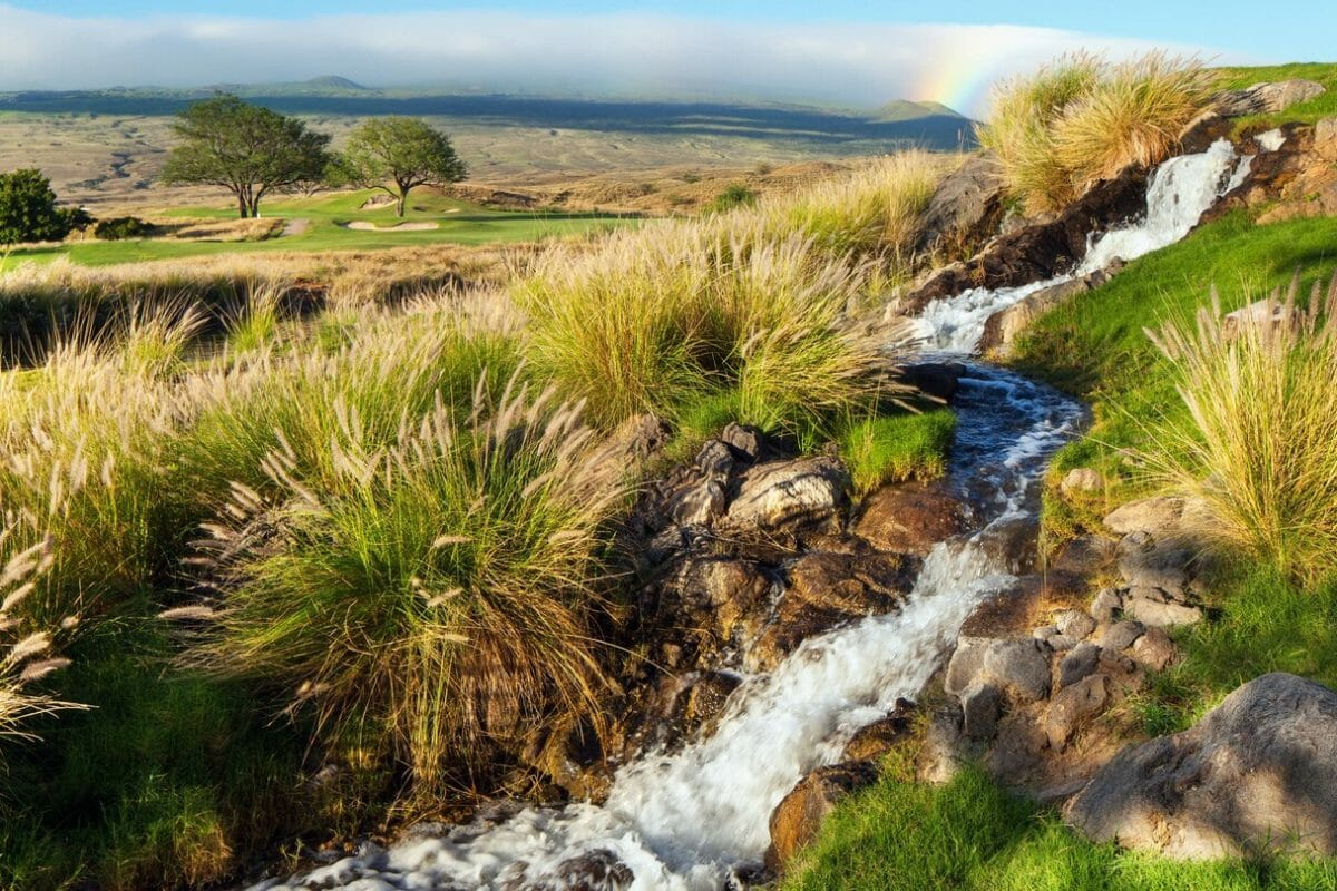 A cascading waterfall features on the golf course at The Westin Hapuna Beach Resort