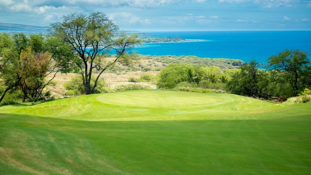Overlooking a downhill green from the tee with distant Pacific Ocean