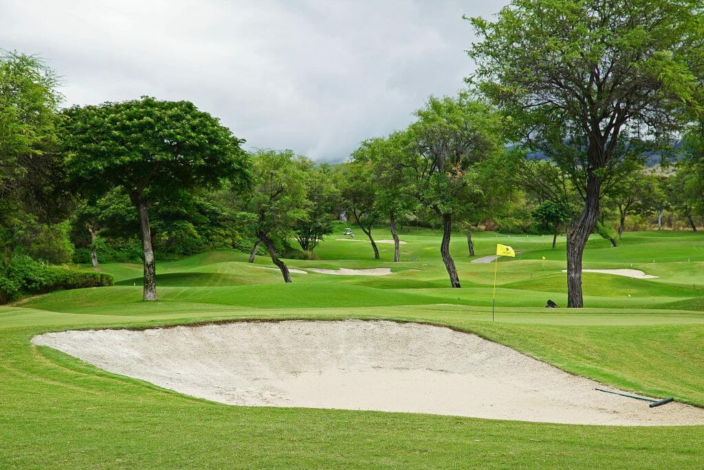 Lush trees and fairways feature on the Gold Course
