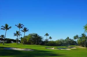 Large palm trees and blue skies await golfers at Wailea Beach Golf Courses