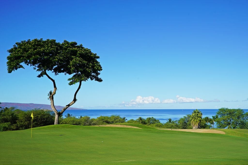 Uninterrupted Pacific Ocean views from the Emerald Course's eighth green
