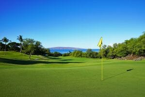 The fifth green of the Emerald Course enjoys views over the Pacific Ocean