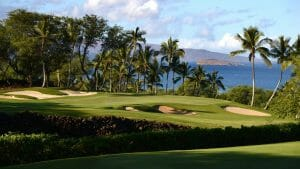 Towering palm trees stand over the seventh green on the Emerald Course