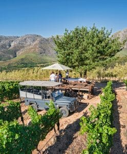 Private picnic set up on the winery estate at Waterford Estate, South Africa